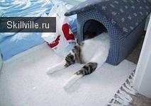 домик кошки из фанеры с обивкой