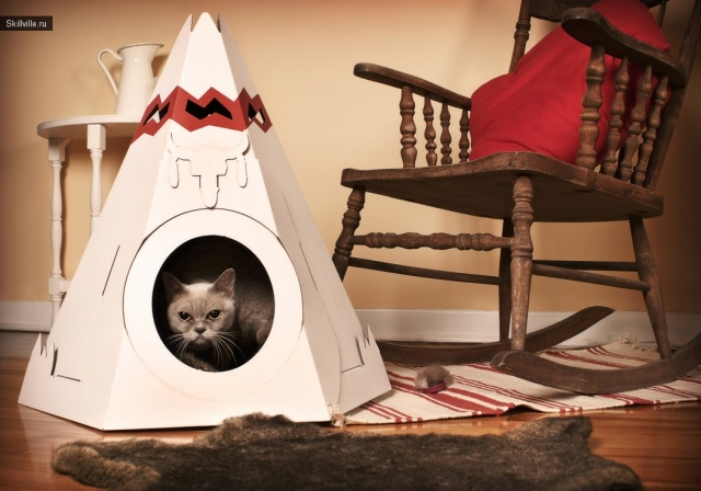 домик кошки из картонной коробки