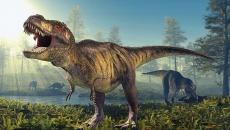40 уникальных динозавров поселились в Талице